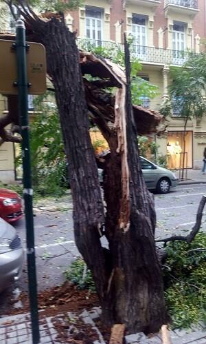 Por el momento la calle Sorni ha sido cortada al tráfico por miembros de la Policía Local y del Cuerpo de Bomberos.(Foto-Valencia Noticias).