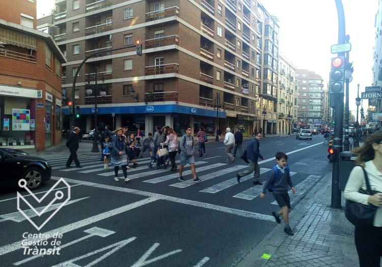 1117 paso peatones en Ángel Guimerá