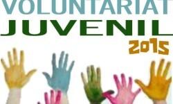 15-11-20_Cartel_Ivaj_Campos_Trabajo_Voluntario_