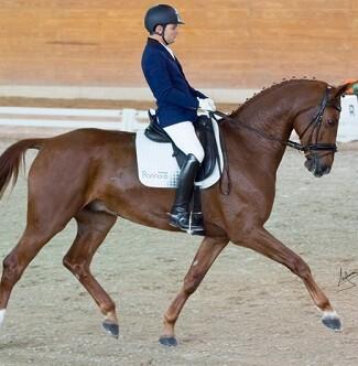 Carlos Nieto montando a su caballo.