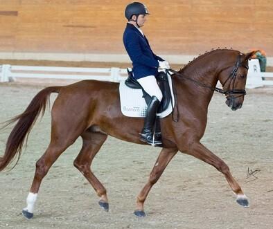 Carlos Nieto y su caballo Florianus