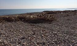 Estado playa de Burriana a 10 días del temporal (2)