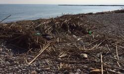 Estado playa de Burriana a 10 días del temporal (3)