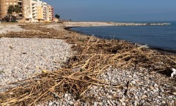Estado playa de Burriana a 10 días del temporal (4)