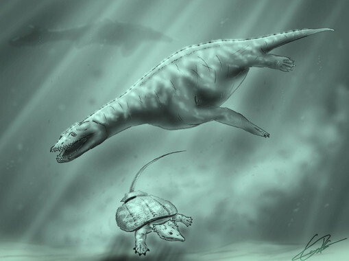 Identifican-los-reptiles-marinos-que-habitaron-la-Peninsula-en-el-Triasico_image_380