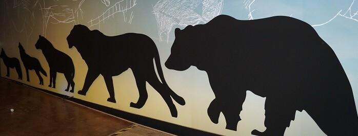 Los grandes mamíferos frente al hombre.