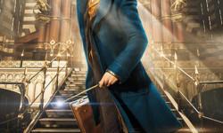 Revelan primeras imágenes del spin-off de Harry Potter (7)