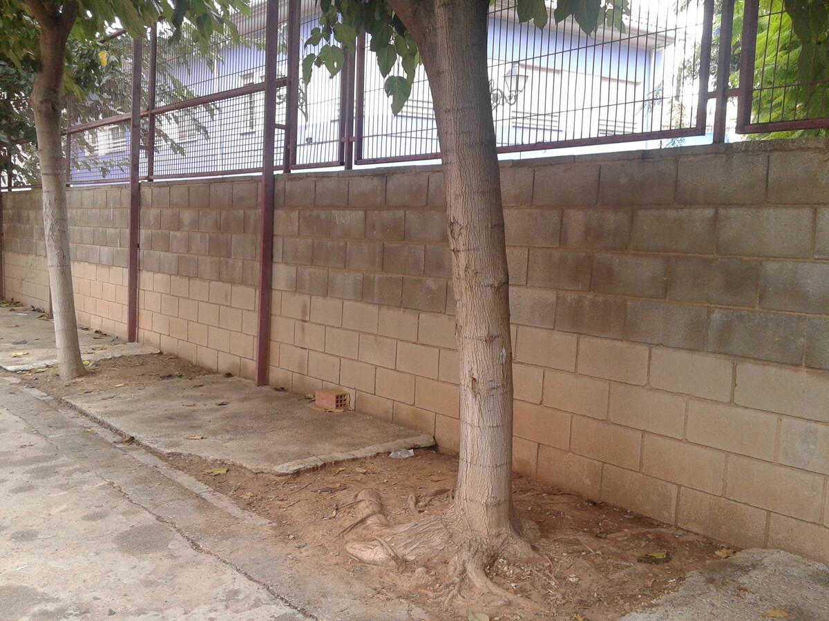 muro patio colegio