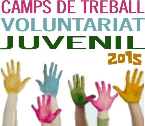 15-12-13_Campos_Trabajo_Voluntario_IVAJ.GVA_JOVE_05
