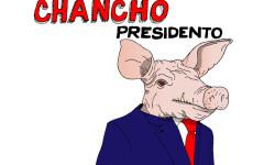 Chancho-01