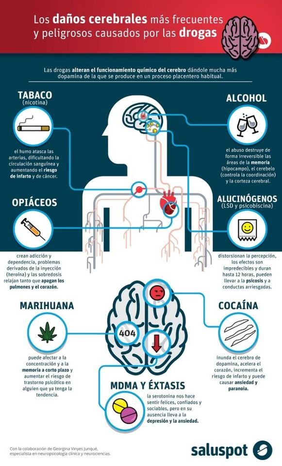 Daños cerebrales causados por drogas (infografía). Dña. Georgina Vinyes Junqué.