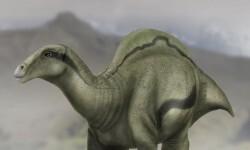 Descubren en Morella una nueva especie de hace 125 millones de años.