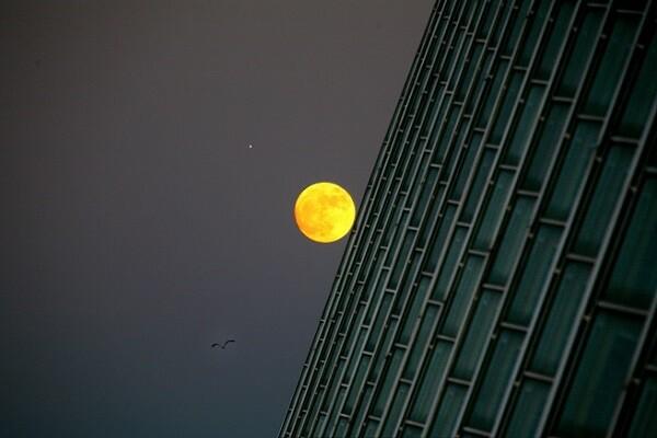 El astrofísico John Barrow inicia el ciclo de astronomía de la Ciutat de les Arts i les Ciències el próximo 14 de enero.