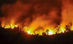 La UME se suma para intentar sofocar el centenar de incendios que asolan  Asturias.
