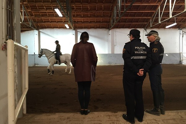 La Unidad de Caballería de la Policía Local vuelve a patrullar en el centro de Valencia.