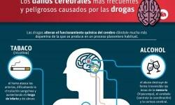 Los daños cerebrales más frecuentes y peligrosos causados por las drogas.