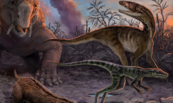 Los-primeros-dinosaurios-aparecieron-poco-despues-de-sus-precursores_image_380