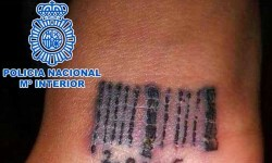 Fotografía facilitada por la Policía Nacional de la operación en la que desarticuló dos clanes que explotaban sexualmente a mujeres. (24/02/2012)