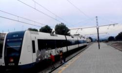 grafiteros en trenes que causaron daños por valor de más de 2 millones de euros (1)