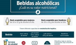 Bebidas alcohólicas Cuál es el valor nutricional.