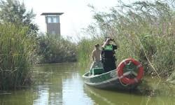 La Patrulla Verde de la Policía Local vigilará la Albufera para evitar la caza furtiva durante la semana de 'cábiles'. (Foto-Valencia Noticias).