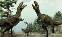 Los-dinosaurios-realizaban-juegos-previos-al-sexo_image_380