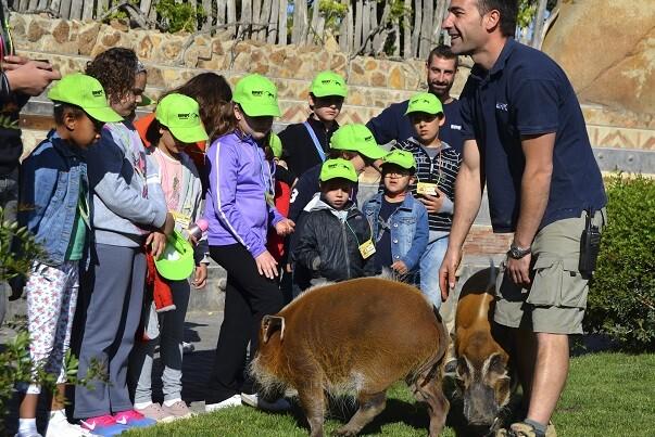 BIOPARC Valencia abre hoy el plazo de inscripción de Expedición África Pascua '16.