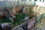 Círculo por la Defensa del Patrimonio reclama la limpieza de los restos romanos de la calle Salvador.
