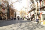 El Ayuntamiento inicia la pacificación del tráfico en el entorno de la Lonja.
