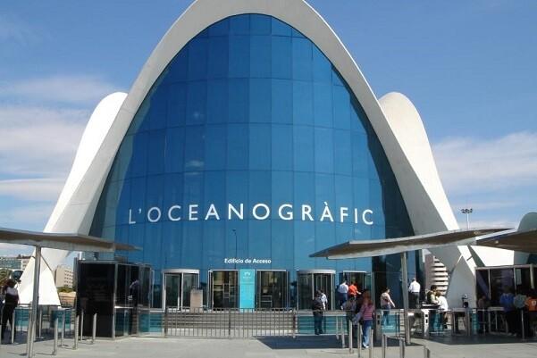 El Oceanogràfic reabre sus instalaciones pese a que continúan las obras.