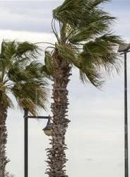 El viento afecta a toda la provincia.