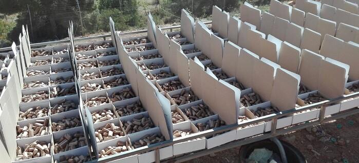 Fuset, visitó las instalaciones de las pirotecnias Zarzoso y Europlá, en Altura (Alto Palancia) y Bèlgida (Vall d'Albaida).