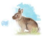 Un-antepasado-del-conejo-conecta-Europa-con-Asia_image_380