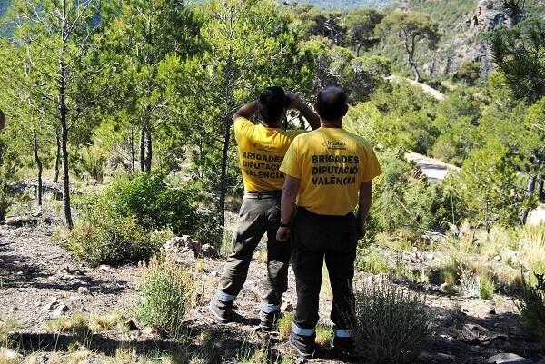 255 brigadistas forestales de Impuls Econòmic Local intensifican la vigilancia en Semana Santa.