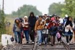 España acogerá a 285 refugiados procedentes de Turquía.