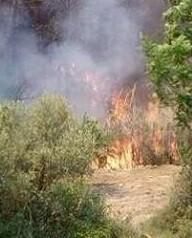 Imagen de archivo de un incendio en la Sierra de la Calderona.