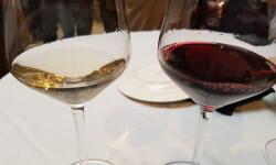 Peculiar Wines la última apuesta de la bodegas Vicente Gandía con los vinos Ostras Pedrín y  Uva Pirata (70)