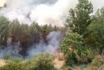 Se continúa trabajando en el incendio declarado en la Sierra de la Calderona.