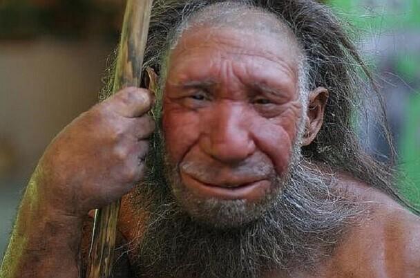 Según un estudio, el canibalismo pudo ser el motivo de extinción de los neandartales.