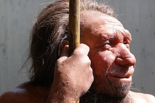 Un estudio revela que los homínidos de Atapuerca fueron antepasados de los neandertales.