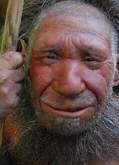 Los neandertales se extinguieron rápidamente hace entre 40.000 y 30.000 años.