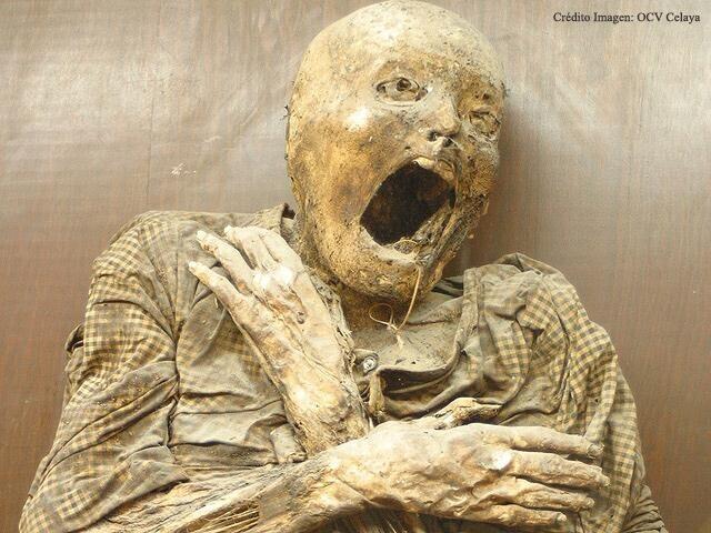 museo-de-las-momias-2
