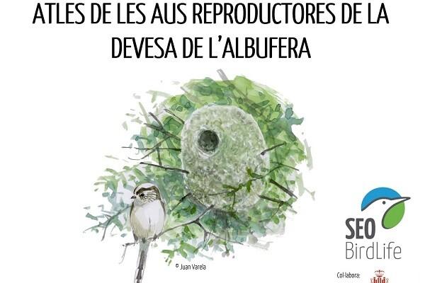 El Ayuntamiento colabora con SEOBirdLife en el segundo atlas de aves reproductoras de la Albufera.