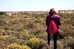 El servicio Devesa-Albufera pone en valor la floración amarilla del bosque en una nueva actividad gratuita.