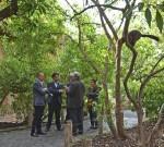 El_Secretario_Autonomico_de_Turismo_Francesc_Colomer_visitando_BIOPARC_Valencia_-_en_Madagascar