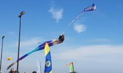Las playas de Valencia se llenan de cometas en el 19 del Festival Internacional del Viento (2)