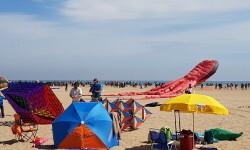Las playas de Valencia se llenan de cometas en el 19 del Festival Internacional del Viento (3)