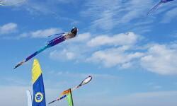 Las playas de Valencia se llenan de cometas en el 19 del Festival Internacional del Viento (34)