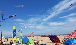 Las playas de Valencia se llenan de cometas en el 19 del Festival Internacional del Viento (38)