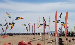 Las playas de Valencia se llenan de cometas en el 19 del Festival Internacional del Viento (4)